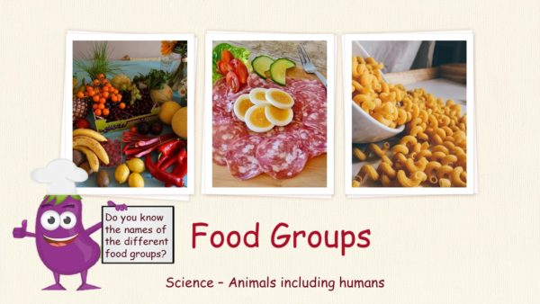 PPT - Food Groups Powerpoint Presentation