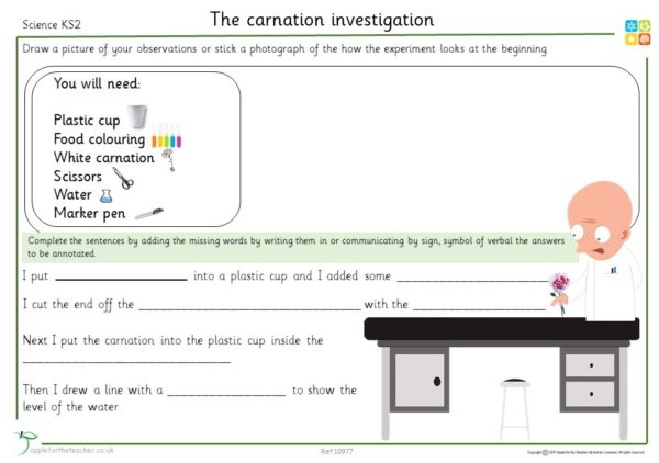 Carnation Investigation Diary