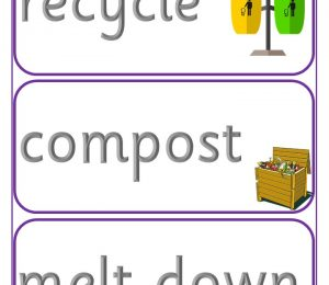 Improving The Environment Vocabulary Cards