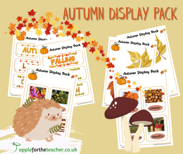 Autumn Display Pack