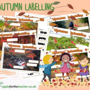 Autumn Labelling Activities