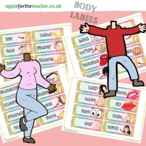 Body Parts Labels