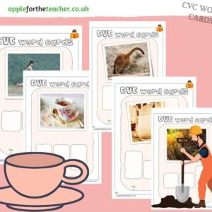 CVC Word Cards Set 2