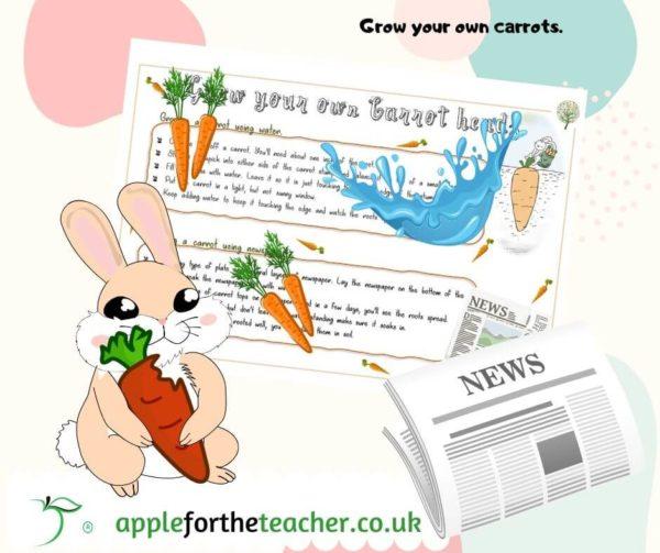 Carrot experiment