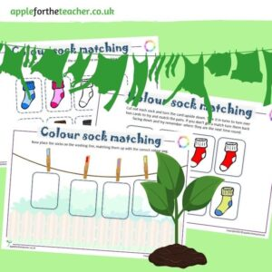 Colour Matching Sock Activity
