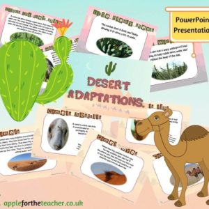 Desert Adaptions powerpoint presentation