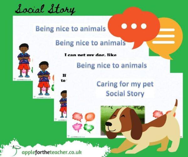 social story new pet