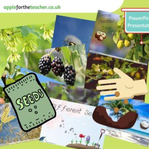 Images of different seeds powerpoint presentation