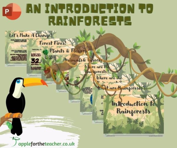 Introduction to Rainforests Powerpoint Presentation