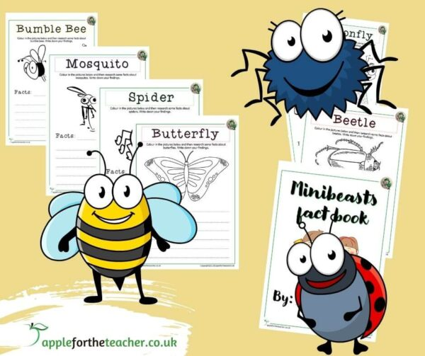Minibeast Fact Finding Booklet
