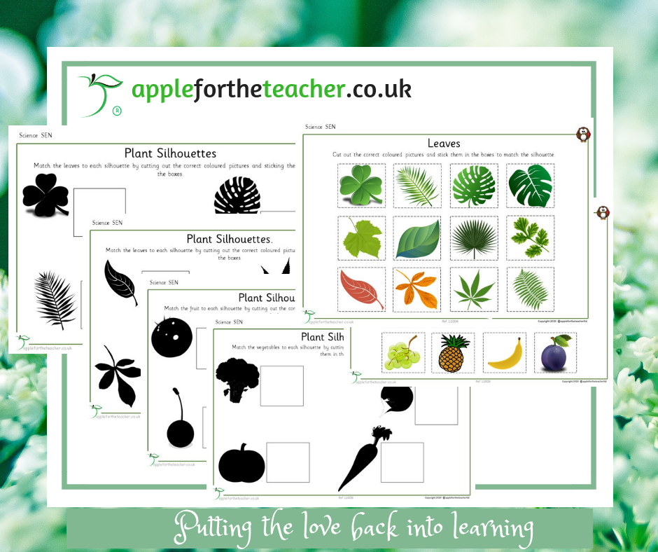 Plant Silhouettes Science SEN EYFS