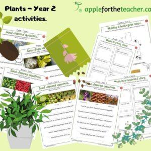 Plants planning activities