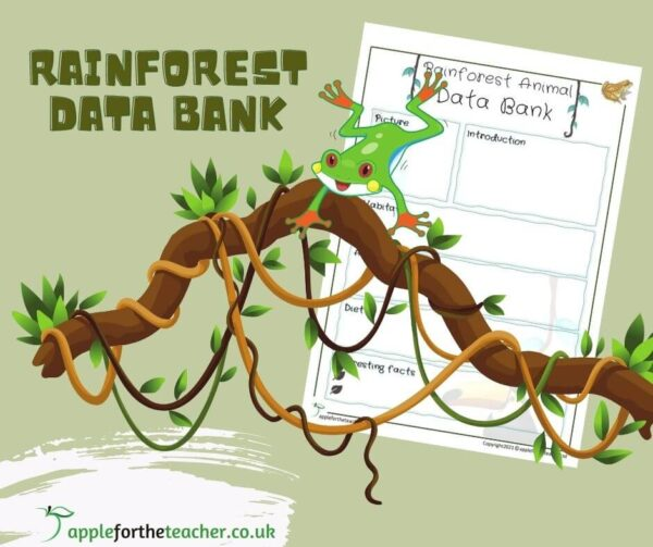 Rainforest Animal Fact Sheet Template