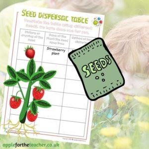 Seed Dispersal Grid