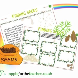 Seed Hunt Activity