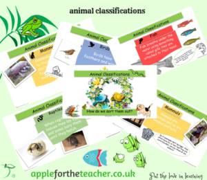 animal classifications powerpoint