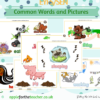 Common Words and Pictures Display E to P SEN EYFS