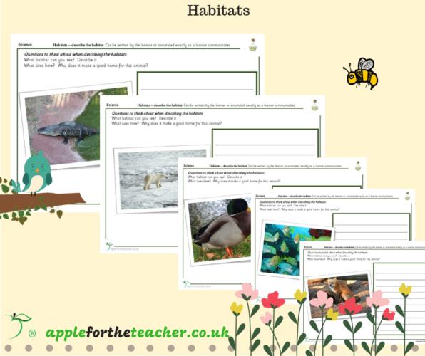 Habitats Look and Describe Activity