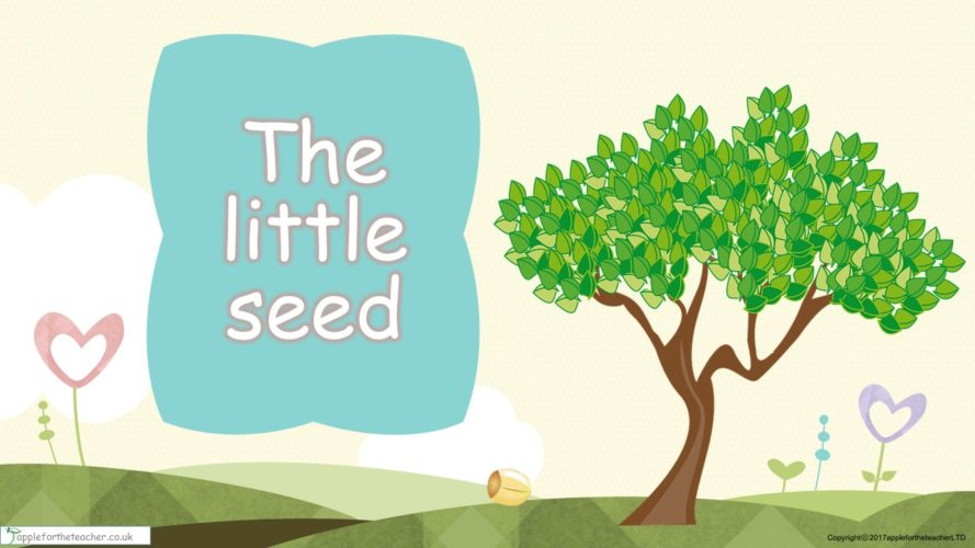 EYFS SEN Years 1 -2 Free PowerPoint Resource | The Little Seed