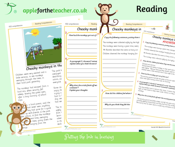 Reading Comprehension Cheeky Monkeys