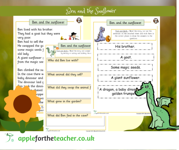 Story Ben and the Sunflower Early Comprehension