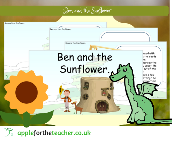 Story Ben and the Sunflower PowerPoint