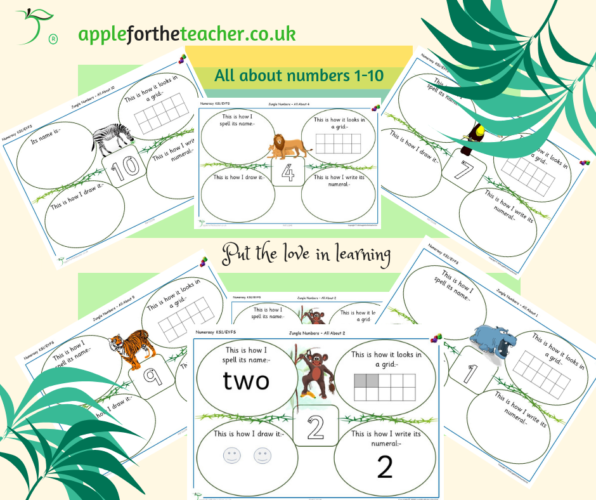 All About Numbers 1 to 10 Jungle Numbers