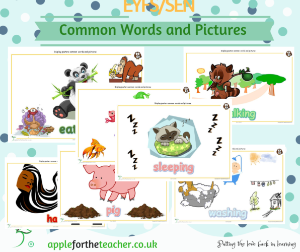 Common Words and Pictures Display Q to Z
