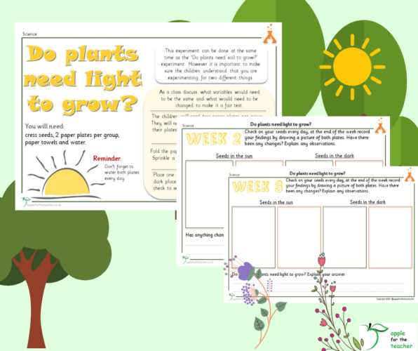 Do Plants Need Light Science